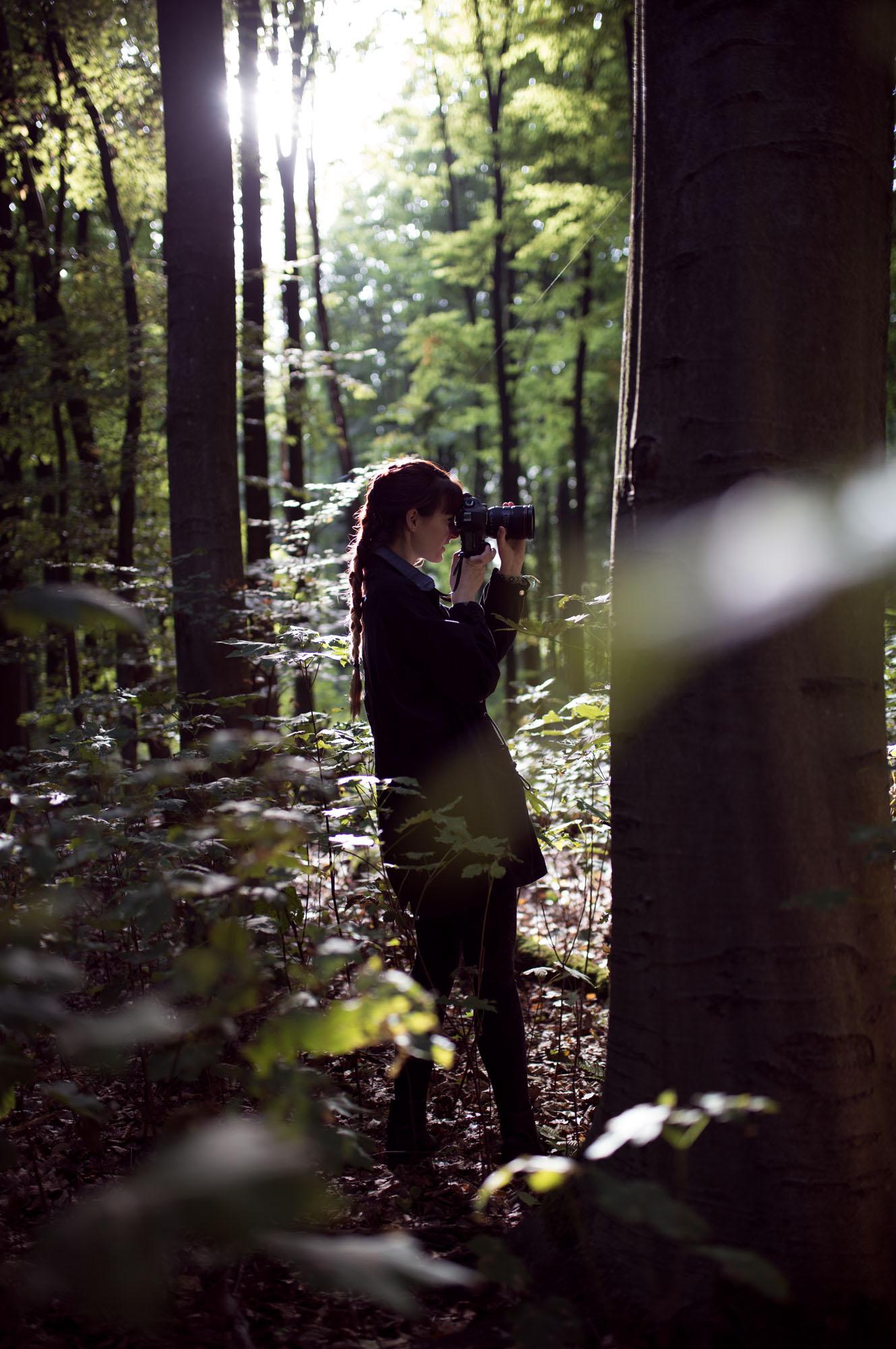 Suche und Sehnsucht nach dem Herbst
