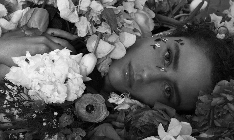 Dillon - Neues Album »Kind«