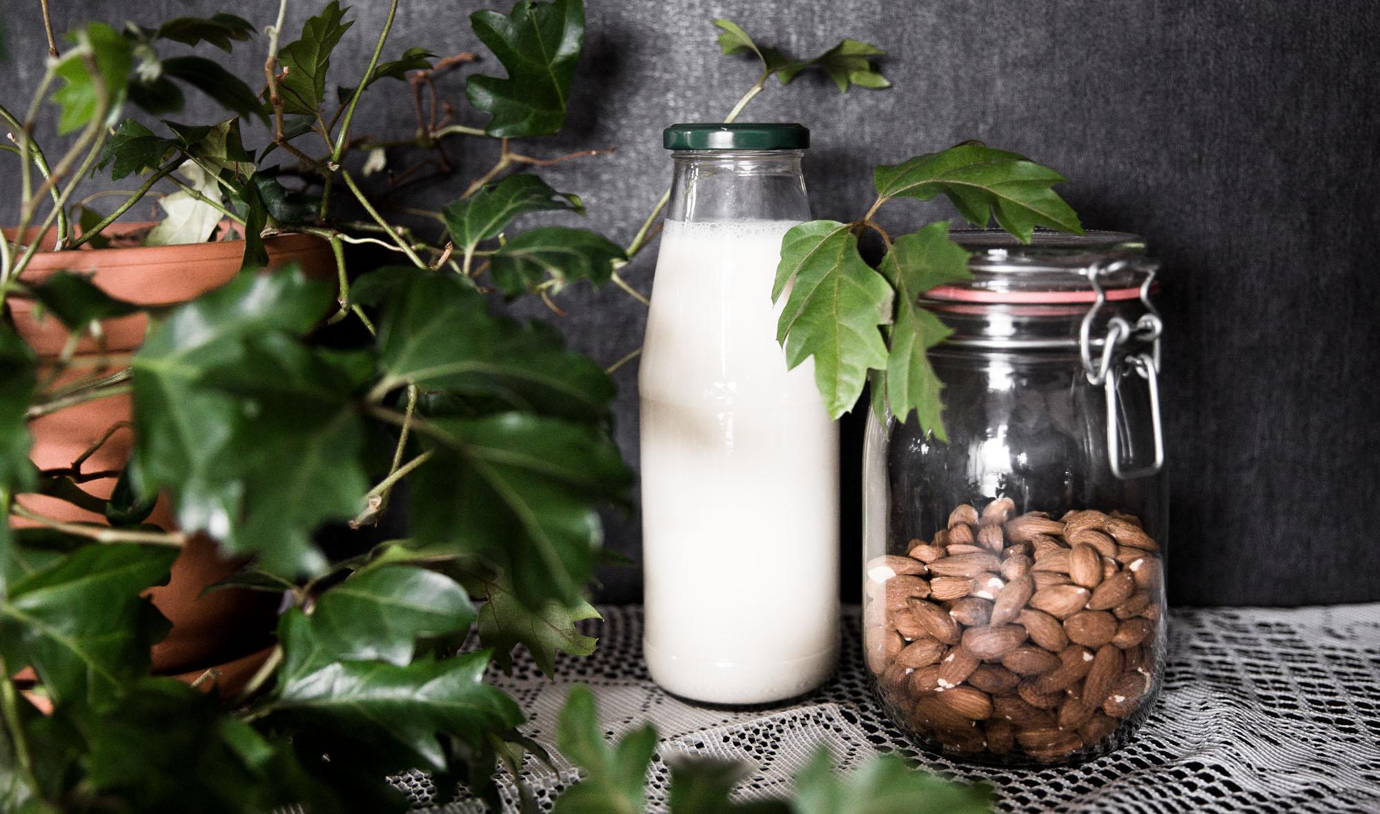 DIY Pflanzenmilch